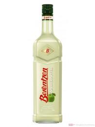 Berentzen Saurer Apfel 16 % 1,0 l Flasche