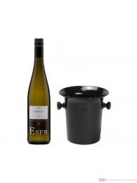 Hans Theo Eser Riesling Lößlehm Qba trocken 2012 0,75l Wein Kübel