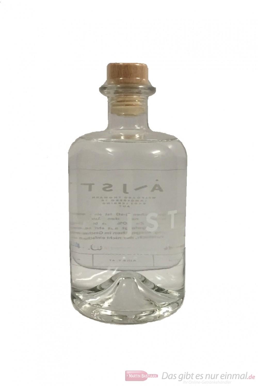 Aeijst Styrian Pale Gin
