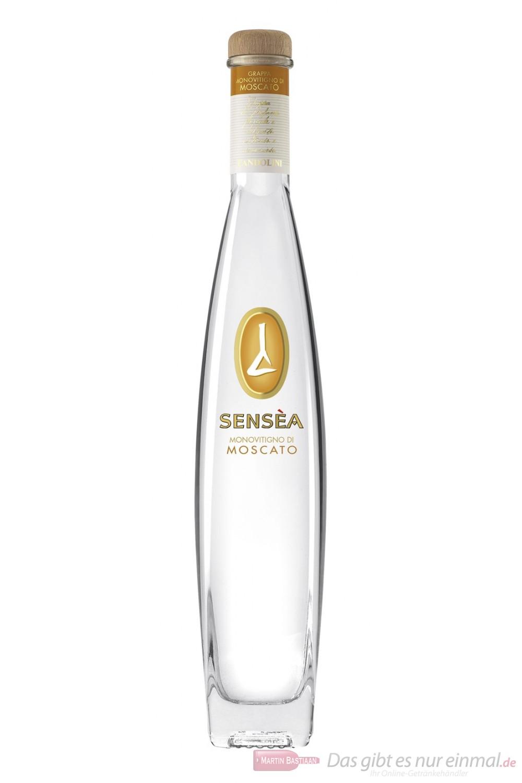 Sensea Moscato Grappa 40 % 0,5l Flasche
