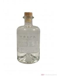Aeijst Styrian Pale Gin 0,5l