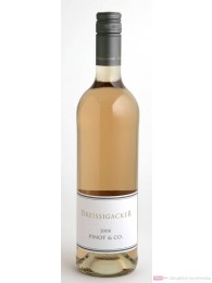 Dreissigacker Pinot und Co Qba Rosé Cuvée trocken 2010 12,5% 0,75l Flasche