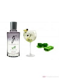 G Vine Nouaison Set Gin 0,7l Flasche + Glas und Ice Sphere Modul