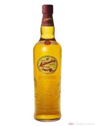 Matusalem Rum Classico Ron 40% 0,7l Flasche