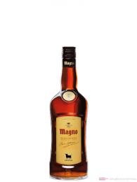Osborne Magno Brandy de Jerez Solera Reserva 0,7l