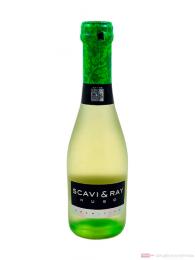 Scavi & Ray Hugo 24-0,2l