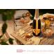 Chandon Garden Spritz  mood 1